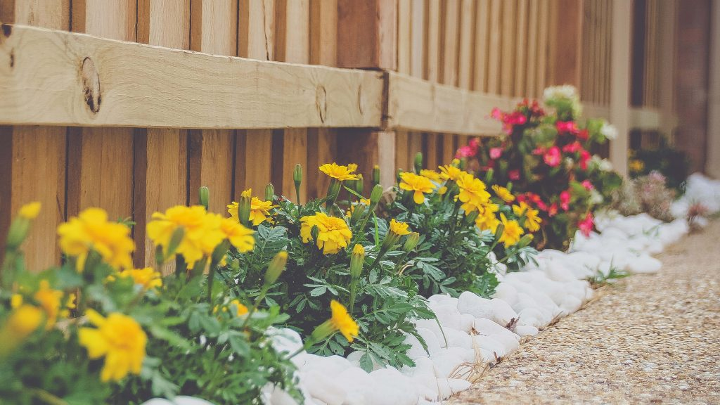 6 Ways To Make The Most Of A Small Backyard